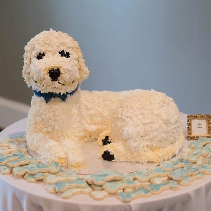 Goldendoodle Cake In 2020 Grooms Cake Goldendoodle Baton Rouge Wedding