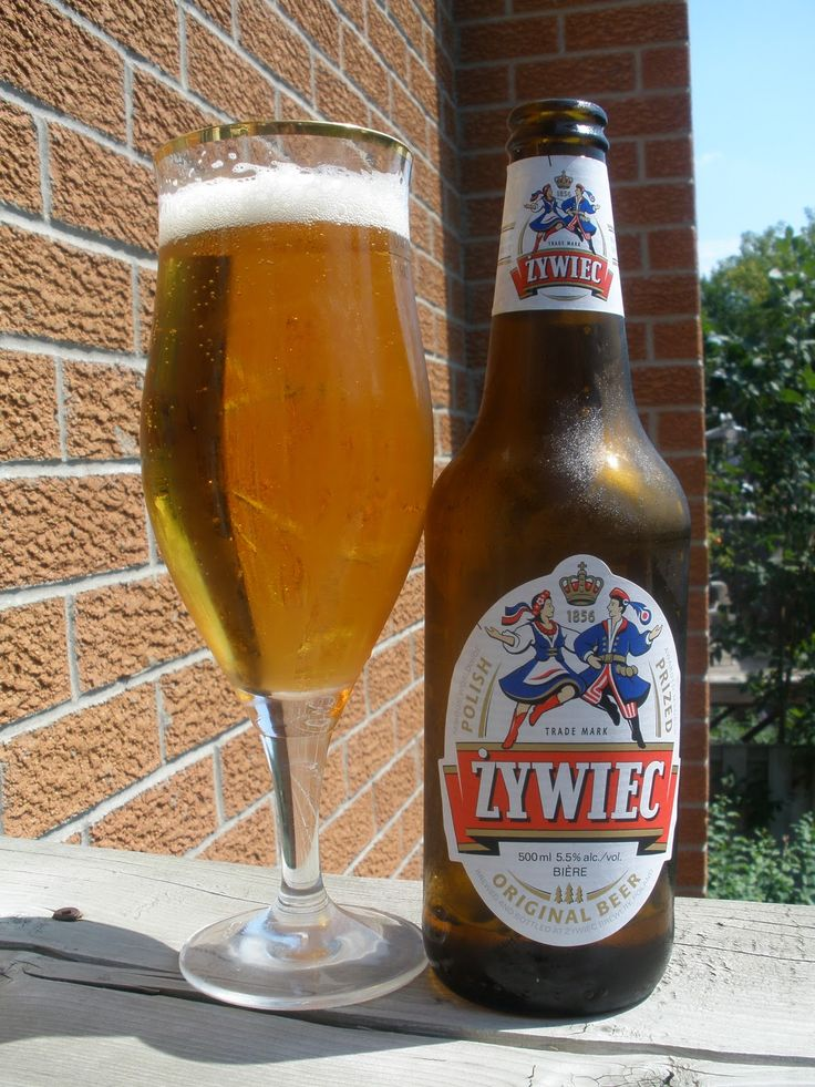 the famous Zywiec beer
