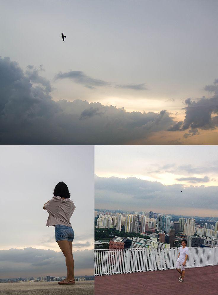 The Pinnacle @ Duxton Singapore