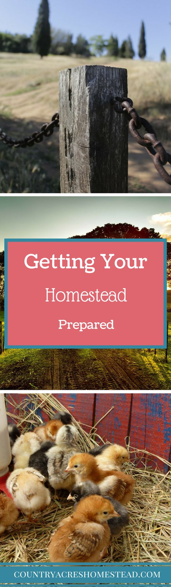 Getting Your Homestead Prepared. You never know when the Zombie Apocalypse is going to strike. Is your homestead prepared?
