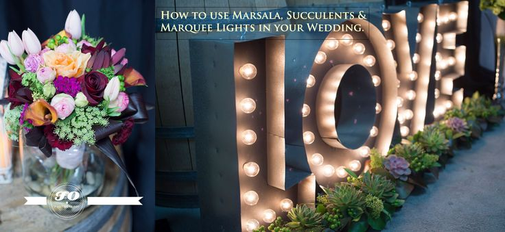 How to use Marsala, Succulents & Marquee lights in your wedding. Look Events, Corinthia Flowers, Images by FO Photography. LOVE marquee lights.