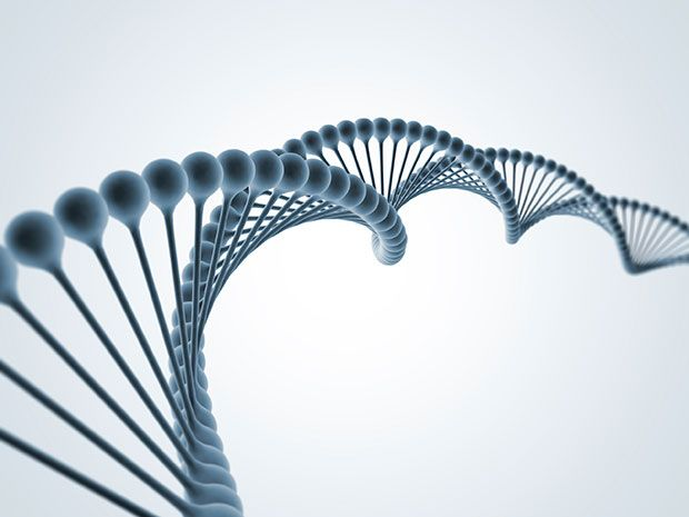 The Human Genome Project-Write could bring down the cost of DNA manufacturing