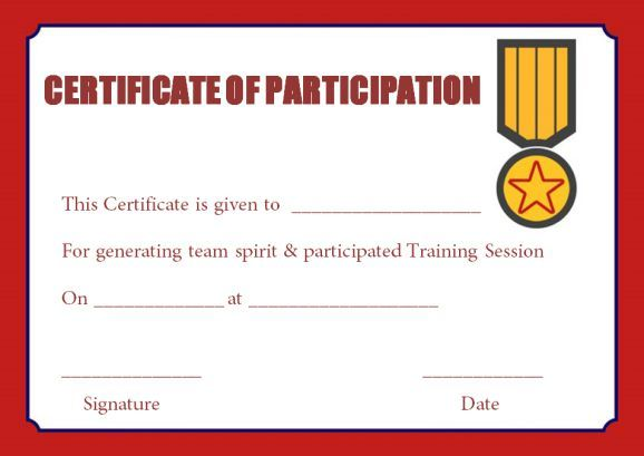 13 Training Participation Certificate Templates Free Download