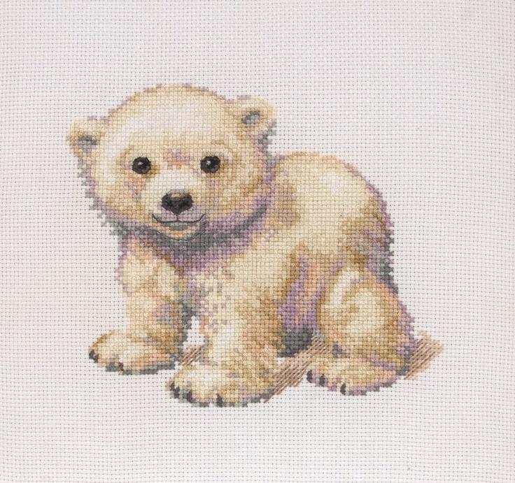 Cute Little Polar Bear - Anchor Cross Stitch kit