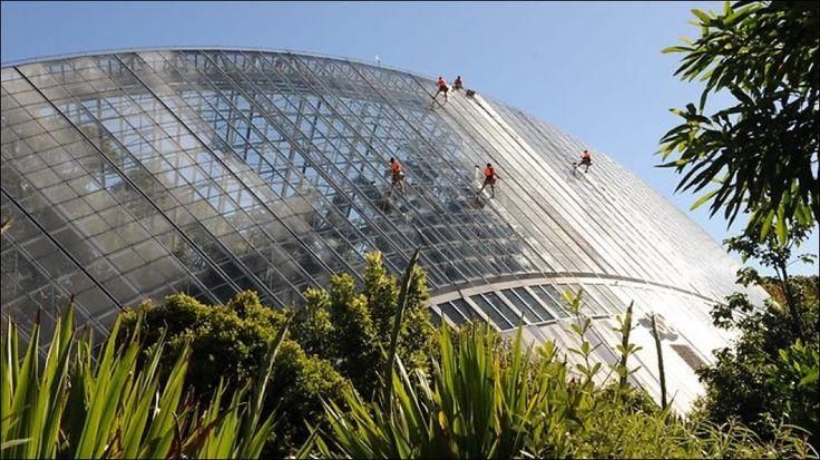 Window washers at work at the Botanic Gardens of Adelaide, Australia.