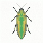 Green Beetle cross-stitch PDF pattern