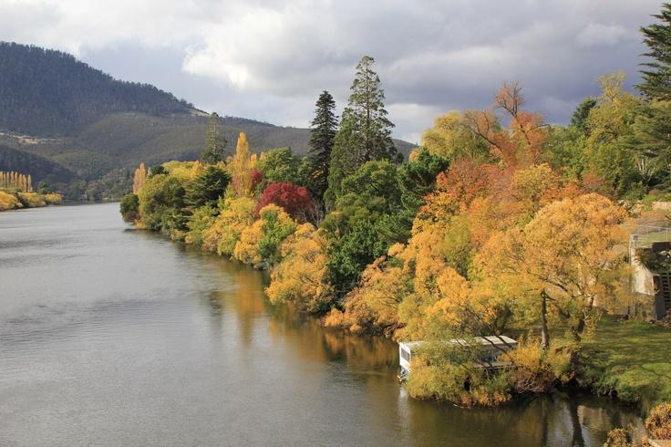 DERWENT RIVER, NEW NORFOLK, TASMANIA