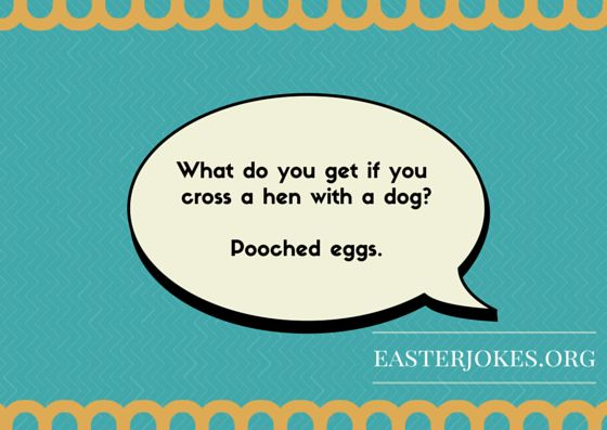1000+ Ideas About Easter Jokes On Pinterest