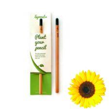 Zasaď tužku - slunečnice