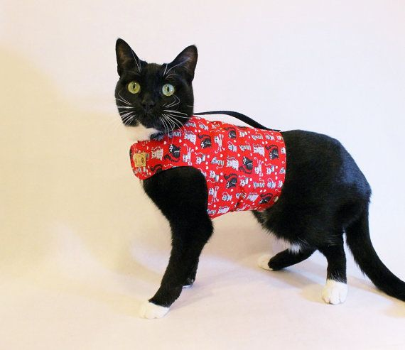 Cat Clothes Red Kitty Print Cat Harness pet by RockinDogsCoolCats  https://www.etsy.com/listing/187290449/cat-clothes-red-kitty-print-cat-harness?ref=shop_home_active_17