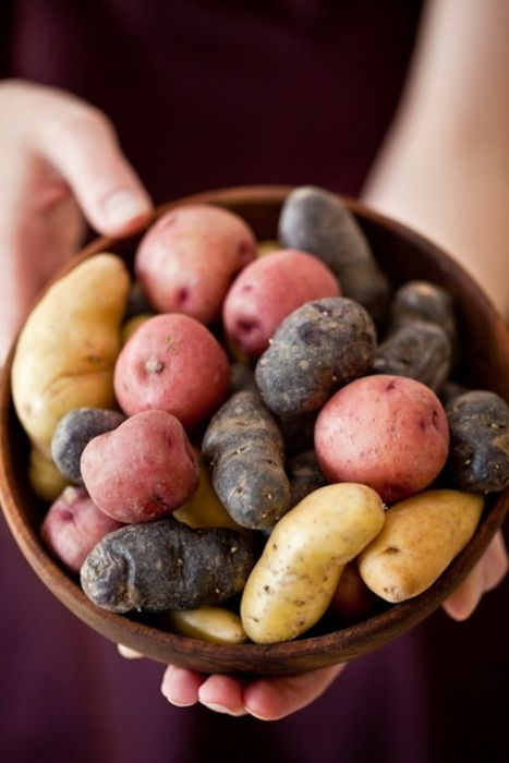 potatoes are fructosefriendly // Find fructosefree recipes on http://fifthfloor.kitchen