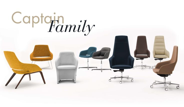 #captain #news #newproduct #captainfamily #family #chair #chairs #office #officefurniture #officechairs