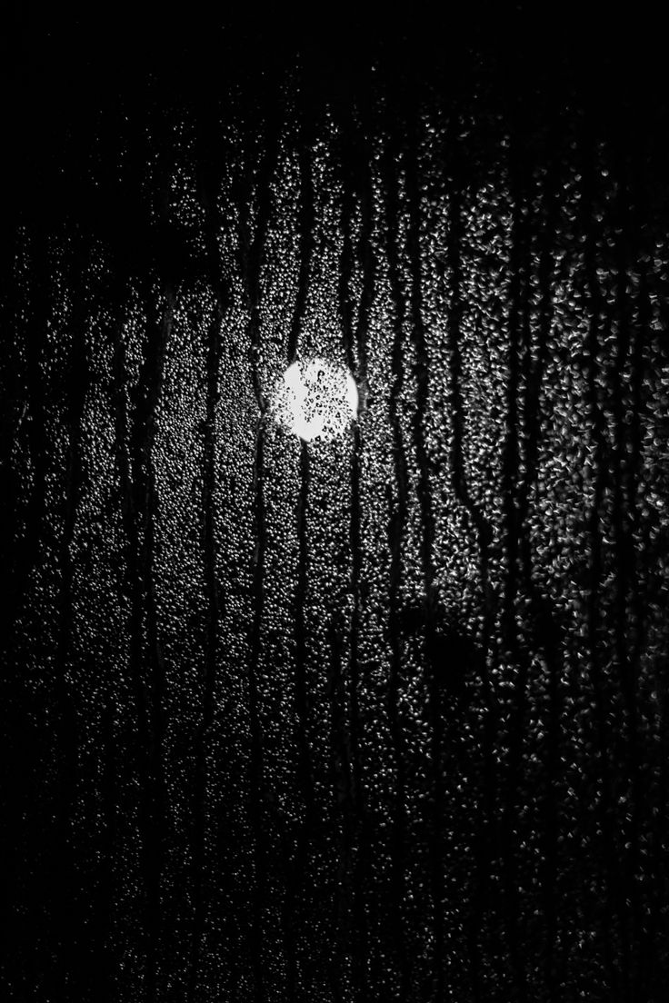 Moon by bluelunaphotography - Blue Luna Photography