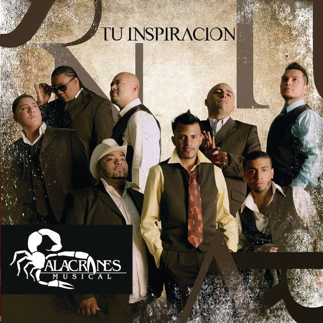 Dame Tu Amor Song By Alacranes Musical Spotify In 2020 Musicals Creative Photography Photography Props