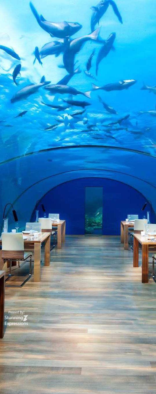 Underwater Restaurant at The Manta Resort & Spa - Pemba ...