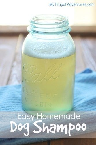 Easy peasy homemade dog shampoo you can make yourself without all the chemicals.  Leaves your dog fresh and clean!