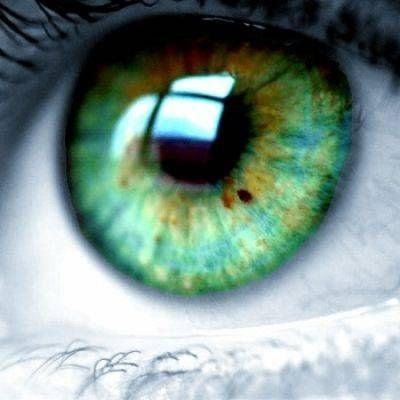 Groene ogen iris