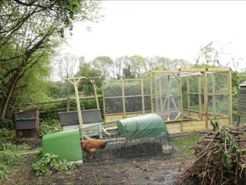 12x27 chicken run built by Green Valley Poultry Supplies - YouTube