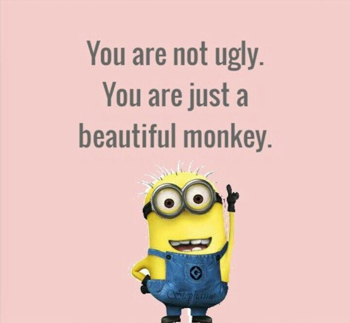 335 best minions everywhere images on Pinterest | Minions quotes ...