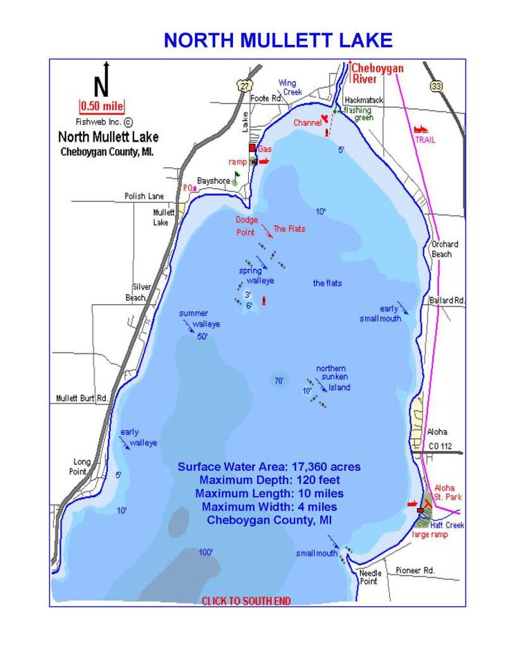 1000 images about mullett lake northern michigan for Mullett lake fishing