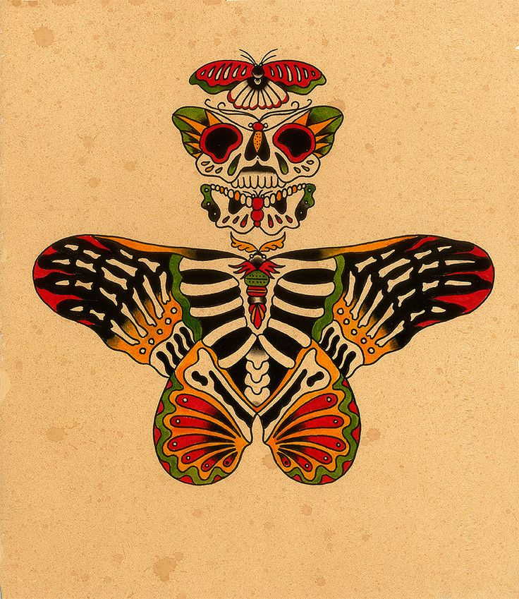 skeleton_moths | Flickr - Photo Sharing!