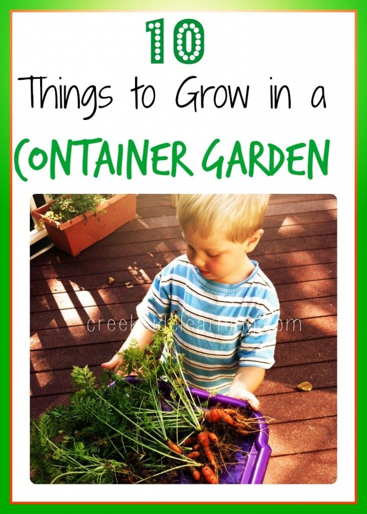 #ad Container Garden Vegetables: 10 Things You Can Grow with your kids. How we use gardening as a learning opportunity each year.