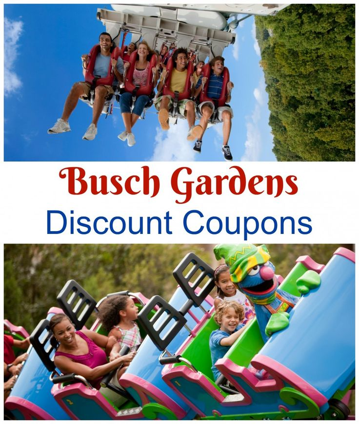 There are several Busch Gardens Discount Coupons available right now!  Make sure to order online to get the best price and to save time at the gate!  We've put all the current coupon codes together in one place.