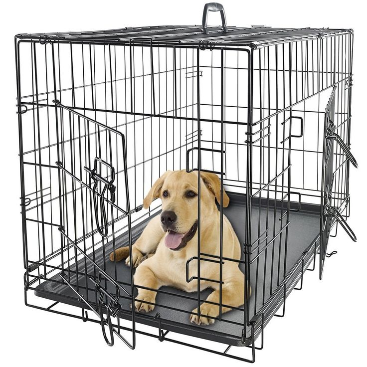 48' Dog Crate 2-Door w/Divider w/Tray Fold Metal Pet Cage Kennel House ** New and awesome dog product awaits you, Read it now  : Dog cages