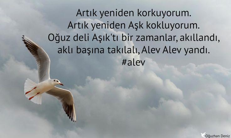 #Alev - Yeniden