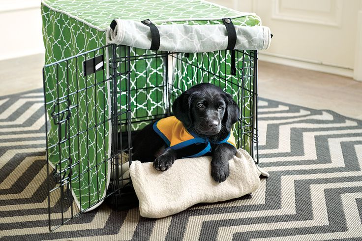 Crate covers help further reduce stress by blocking out distractions around the house
