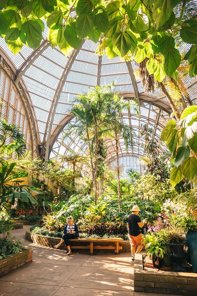 ea54daff98e69af2593fc611c33d440a - Pacific Gardens North Park San Diego