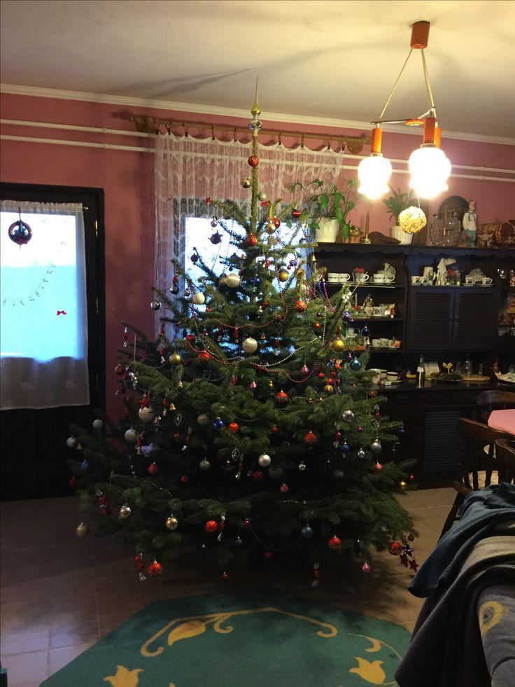Karácsonyfa 2015