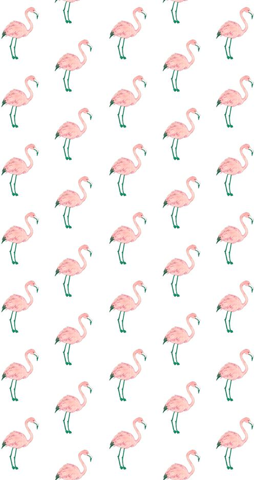 Flamingos  {3° Imagem} XOXO  | We Heart It | wallpaper, pink ...