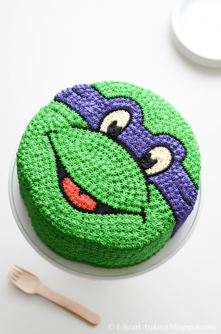 best 25 turtle cakes ideas on pinterest turtle birthday cakes