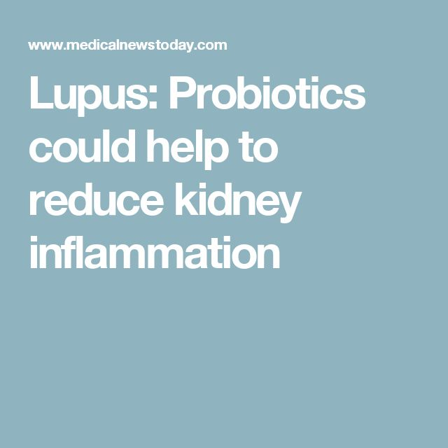 Lupus: Probiotics could help to reduce kidney inflammation