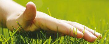 Cinq conseils faciles pour obtenir une belle pelouse - Conseils De Jardinage, Entretien Des Pelouses, Été