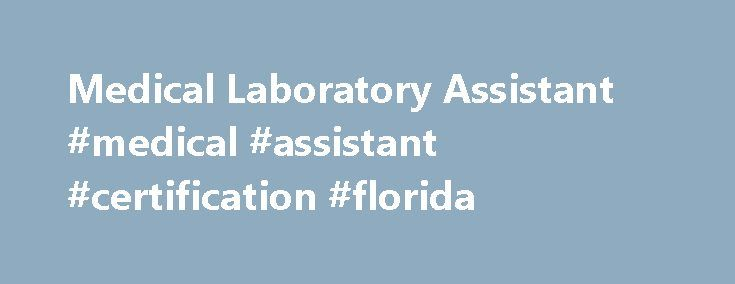 Medical Laboratory Assistant #medical #assistant #certification #florida http://insurance.remmont.com/medical-laboratory-assistant-medical-assistant-certification-florida/  # Medical Laboratory Assistant / Technician What is a Medical Laboratory Assistant / Technician (MLA/T)? Medical Laboratory Assistants / Technicians (MLAT s) are trained to work under the supervision of a Technologist to conduct routine diagnostic tests, as well as set up, clean and maintain medical laboratory equipment…