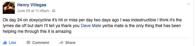 Powerful yerba mate helped this person with their lyme disease #yerbamate