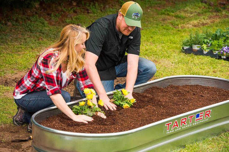 Best 25 soil type ideas on pinterest types of soil for Easy houseplants safe for pets