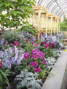 13 best images about botanical gardens on pinterest for Botanical gardens maryland