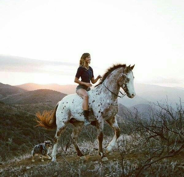 Appaloosa dreaming! Horse ride with a faithful dog, the best!