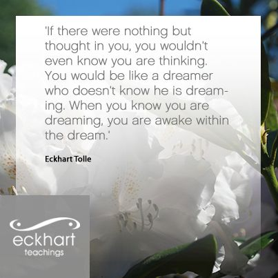 Image result for eckhart tolle quote on dream