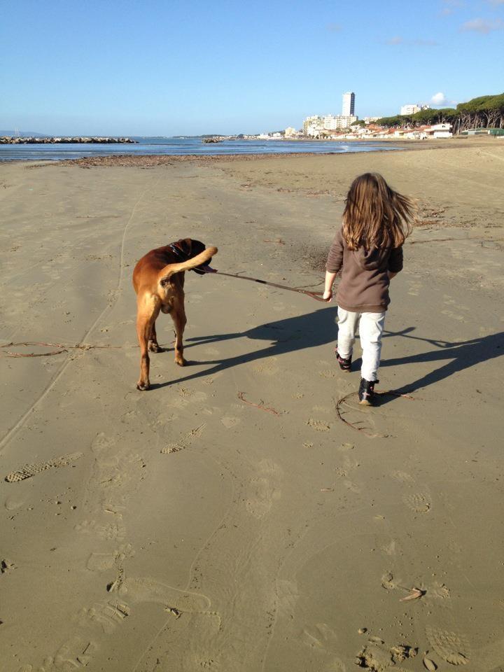 Follonica beach
