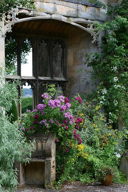 Lovely Garden Window