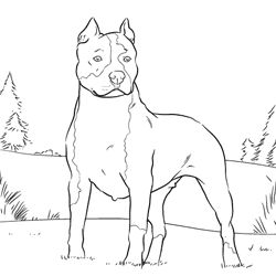 real looking pitbull puppies coloring pages real looking pitbull puppies coloring pages