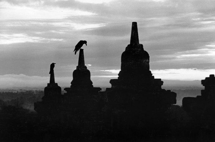 "NYer Page-Turner on Twitter: ""A writer's haunting trip through Indonesian history. @gillianterzis talks to Eka Kurniawan: http://t.co/v5OMYgggg7 http://t.co/lZ29w8VMN3"""