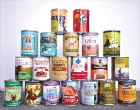 The Benefits of Canned Dog Food