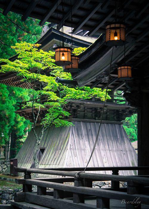 Lanterns at Danjo Garan (壇場伽藍), Koyasan, #Japan #garden #love