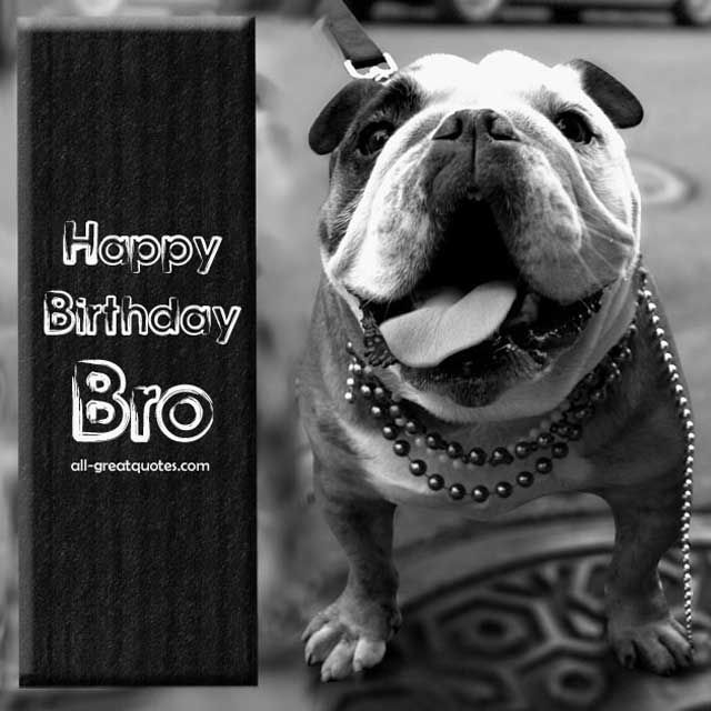 Here you will find a fantastic collection of Happy Birthday Brother Wishes, Poems And Quotes just for your Bro. If you have Brothers, be them Big or Little Brothers, or maybe a Brother In Law, it will come as no surprise that your Brothers Birthday will arrive every year with out fail. If you are looking for a great Brother Poem, Verse, Message Quote or Greeting for writing on your Brothers Birthday Card, then you must certainly take a look at my awesome selection of Happy Birthday Brother…