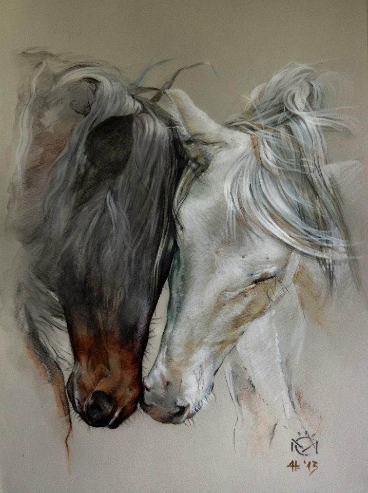 Horse painting, drawing. Horse art Indio XLII & Entendido XXXIV - Caballos Mayoral. A beautiful Bay and White, grey horse. Please also visit www.JustForYouPropheticArt.com for more colorful art you might like to pin. Thanks for looking!